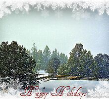Holiday by Donna Anglin Husband