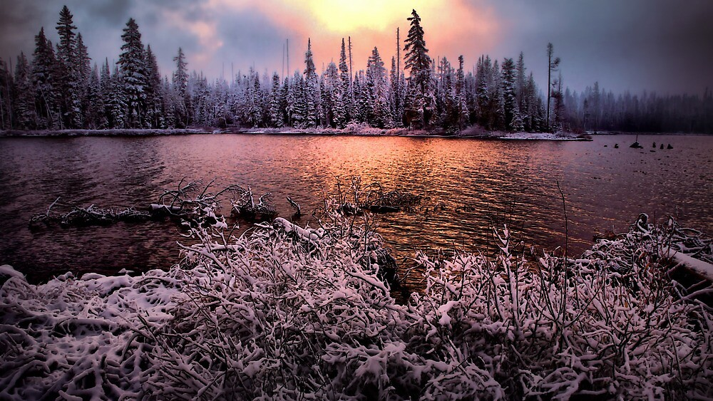 In His Arms Of Love by Charles & Patricia   Harkins ~ Picture Oregon