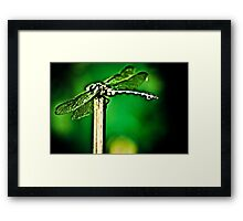 I am a Dragon err..Dragonfly...umm...Got Featured Work Framed Print