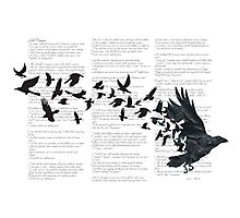 Vintage Style Print with Poem Text Edgar Alan Poe: Edgar Alan Crow Photographic Print