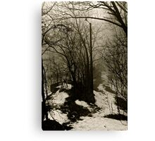 dark passage Canvas Print