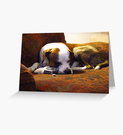 Taking a Snooze after long days work~ Greeting Card