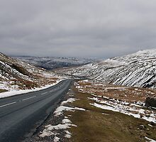 In the bleak mid winter by John (Mike)  Dobson