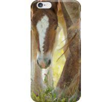 Foal iPhone Case/Skin