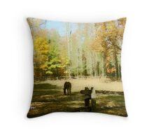 Fall Corral Throw Pillow