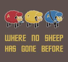 Where no Sheep Has Gone Before Kids Clothes