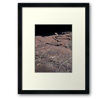 Space To Climb Framed Print