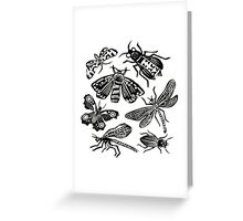 Insect Collection Lino Prints Greeting Card