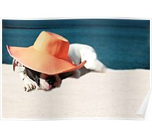 Beach Day for Bubba Poster