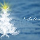 Believe by Terrie Taylor
