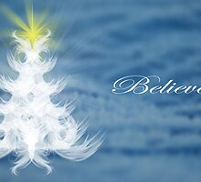 Believe by Terrie Taylor