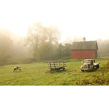 Country Morning Photographic Print