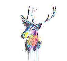 Cool awesome deer head colorful vibrant watercolors  Photographic Print