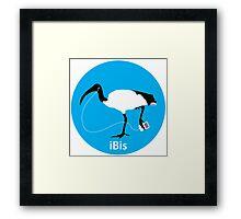 iBis 2: the reIBISening! Framed Print