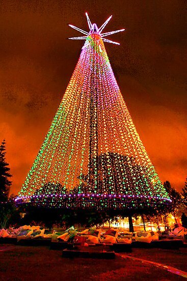 Telecom Tree, Auckland, New Zealand. by Lynne Haselden