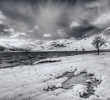 Glen Cannich Winter by Fraser Ross