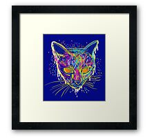 candy cat Framed Print