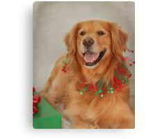 Abigail's Christmas Portrait Canvas Print