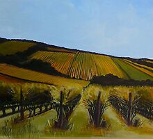 Tuck's Ridge vineyard, Mornington Peninsula. Elizabeth Moore Golding 2009Ⓒ by Elizabeth Moore Golding