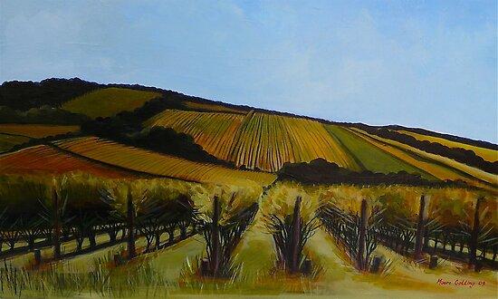 Tuck's Ridge vineyard, Mornington Peninsula. Elizabeth Moore Golding 2009Ⓒ by Elizabeth Moore Golding