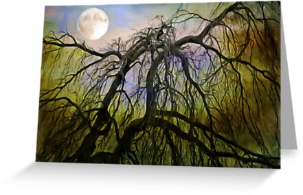 By The Light of the Silvery Moon by Curtis  Sheppard