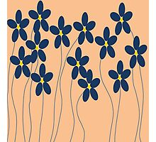 Flowers in orange and blue Photographic Print