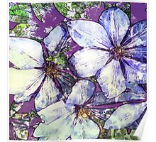 7 DAYS OF SUMMER- DISTRESSED FLORALS/FLOWERS 5 Poster