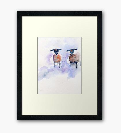 Two sheep Framed Print