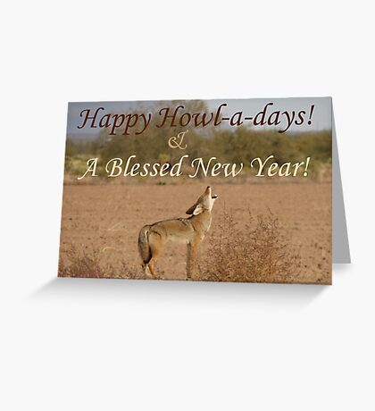 Coyote Howl-A-Day Card Greeting Card