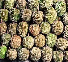 Durian by Foundfotos