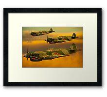 Flying Tigers Framed Print