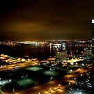 Night Landscape San Diego Part 1 by devinadewi