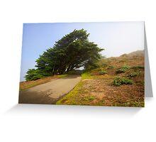 Wind swept trees Greeting Card
