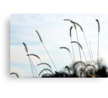 Wispy Weeds Canvas Print