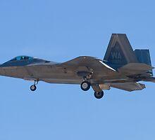 WA AF 04-4071 F-22A Raptor by Henry Plumley