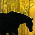Dawn Silhouette by Andrea Michael