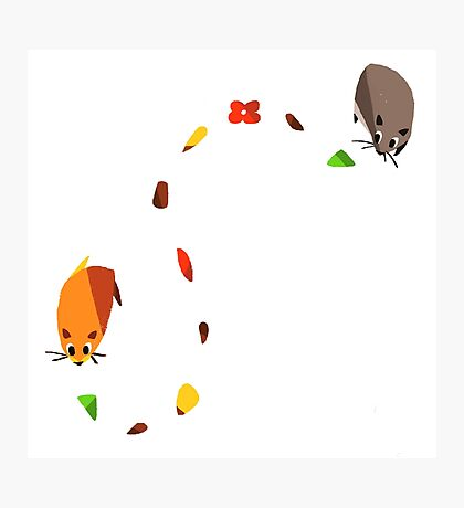 Hamster trail  Photographic Print