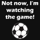 Not now, I'm watching the game #5 by marinasinger
