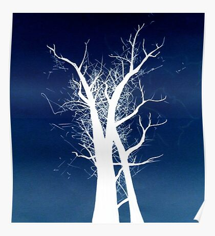 Inverted Trees Poster