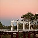 Moonlight over North Bourke by dmbphotography