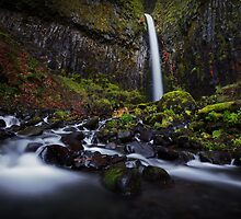 Dry Creek Falls II by Tula Top