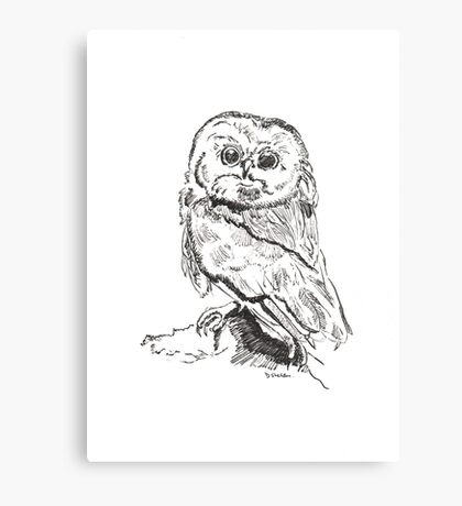 Owl pen and ink illustration Canvas Print