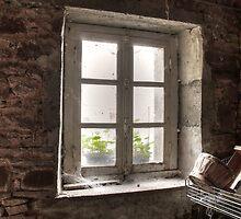 The old window ... by jean-jean