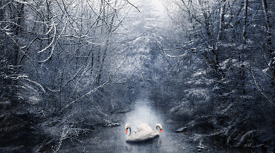 Frozen Time by Svetlana Sewell