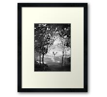 Walk in the woods on a rainy day Framed Print