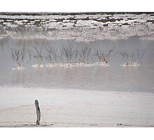 nature wins out.Salt lake Kamgaroo Island Photographic Print