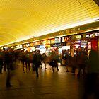 TRain station by Slawomir  Piasecki