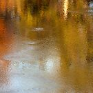 Autumn Reflections 2 by barnsis