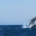 The Mother Whale Breaches by SlenkDee