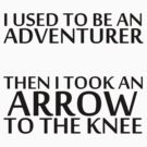 I Used to be an Adventurer, Then I took an Arrow to the Knee by NiteOwl